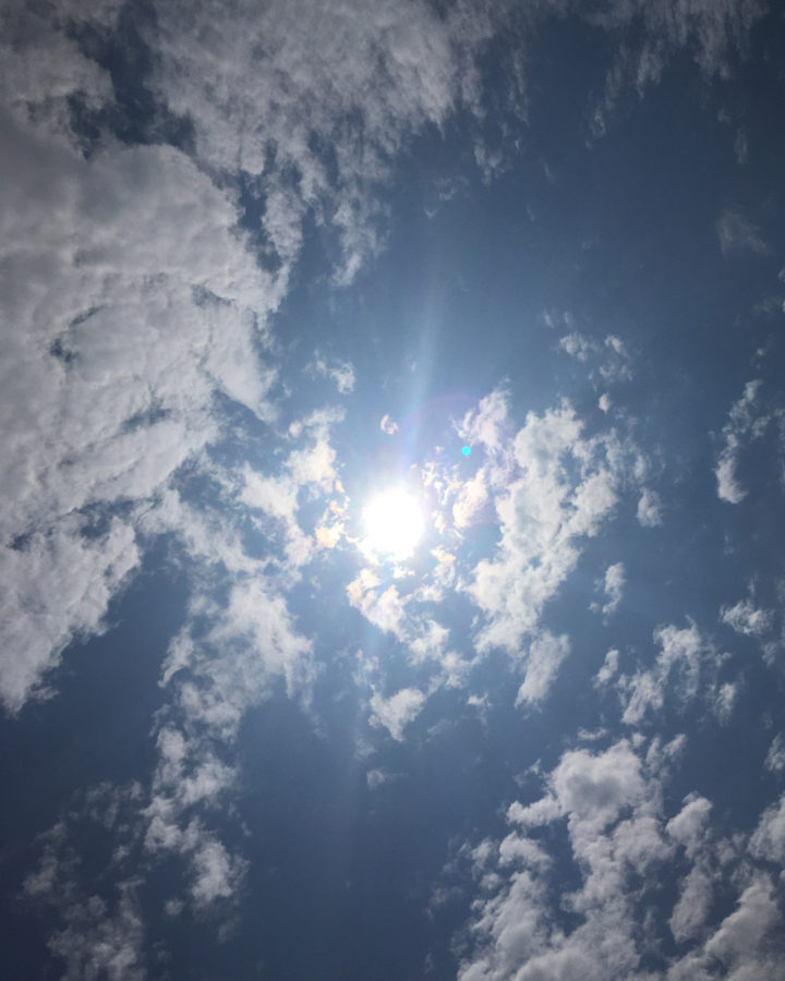 sunlight benefits 2 - roottoskykitchen.com